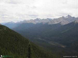 Berge und Bäume soweit das Auge reicht - Kanada pur!