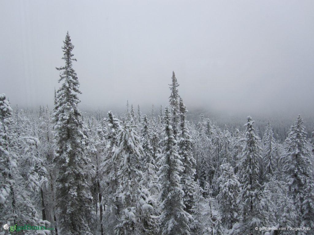 Blick aus dem Hotelzimmer um 07.00 Uhr morgens in Banff